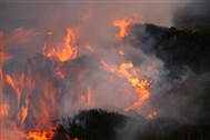 Burning up: moorland fires