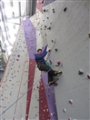Fancy building a climbing wall?