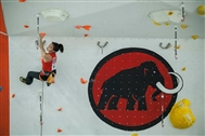 British Lead and Speed Climbing Championships 2013 - Results