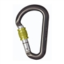 DMM locking carabiner recall