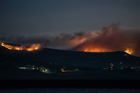 Wild fires - how can you help?