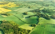 Will Agriculture Bill deliver a Green Brexit?