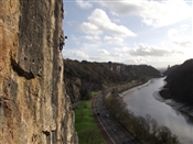 Volunteer needed to organise and co-ordinate the annual Avon Gorge Big Bramble Bash