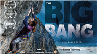 The Big Bang: now available online