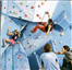 BMC Climbing Wall Users Survey 2010 report