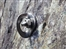 Warning issued over slate bolts