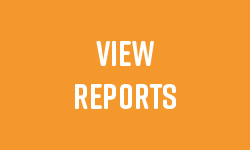 View Reports